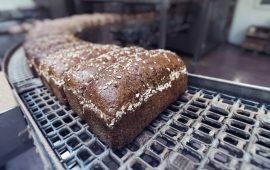 ktba-webinar-meel-brood